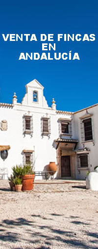 andaluciarustica.com, fincas rústicas en Andalucía
